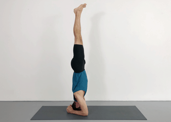 standing poses with inversions  weekly advanced class 54