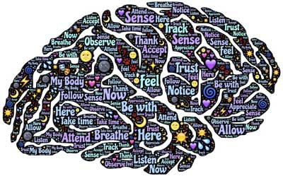 Understanding The Mind Via The Body