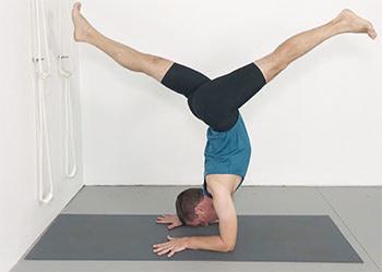 pincha mayurasana  weekly advanced class 150  yoga selection