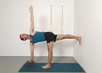 standing poses & twists
