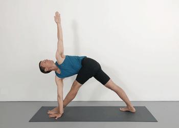 basic beginner course ii  yoga selection