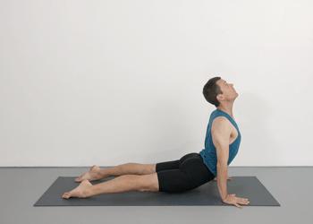 beginner extension course ii  class 7  yoga selection