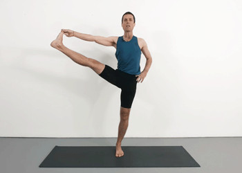 whole body  weekly advanced class 90  yoga selection